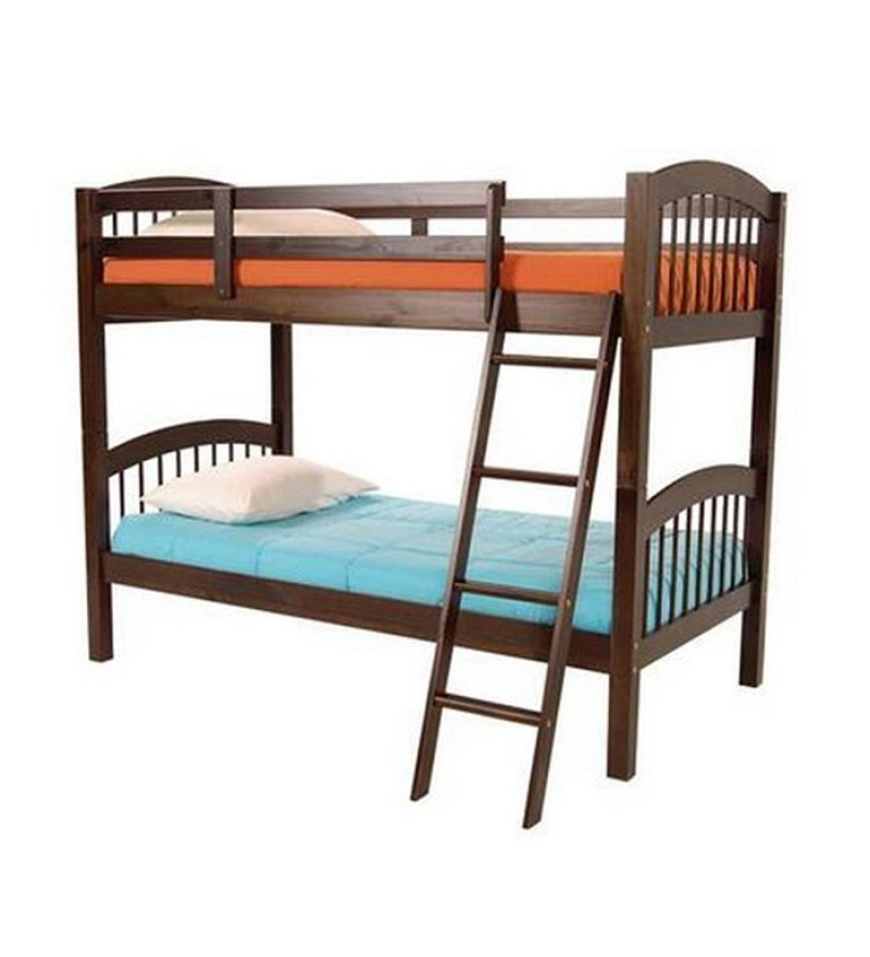 The Compact Bunk BedMudra Bunk Beds Furniture Pepperfry
