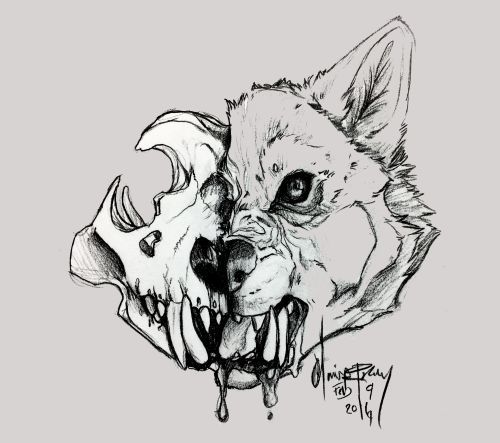 5bedf3f648976aa195400942bee8b9e2 Jpg 500 443 Skulls Drawing Skull Art Art Drawings Sketches