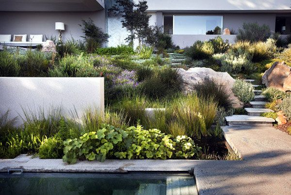 Landscaping Bridle Road Residence Contemporary Garden Design Modern Landscaping Landscape Design