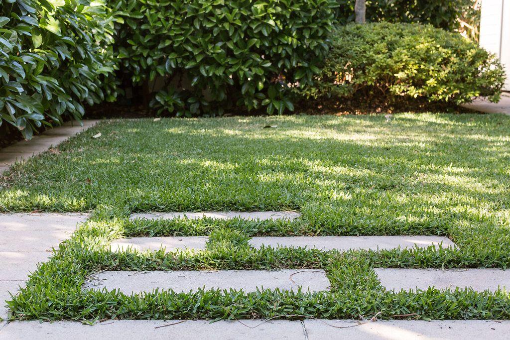 Steppers In Lawn In 2020 Landscape Design Creative Landscape Garden Landscape Design