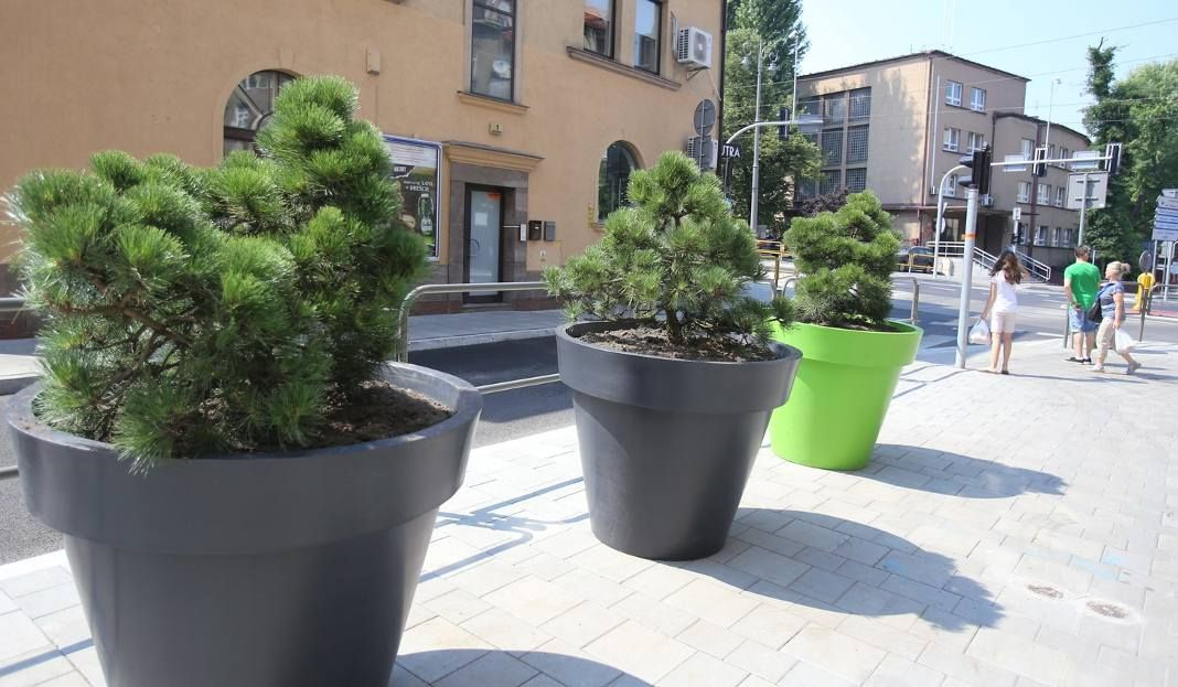 Jakie Rosliny Dla Miejskich Donic Flower Pots Plants Planter Pots
