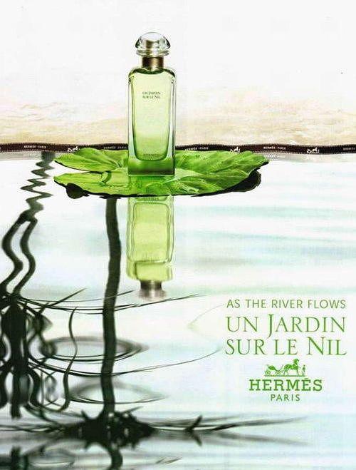 Un Jardin Sur Le Nil Hermes With Images Hermes Perfume