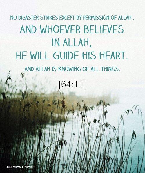 Quran 64:11
