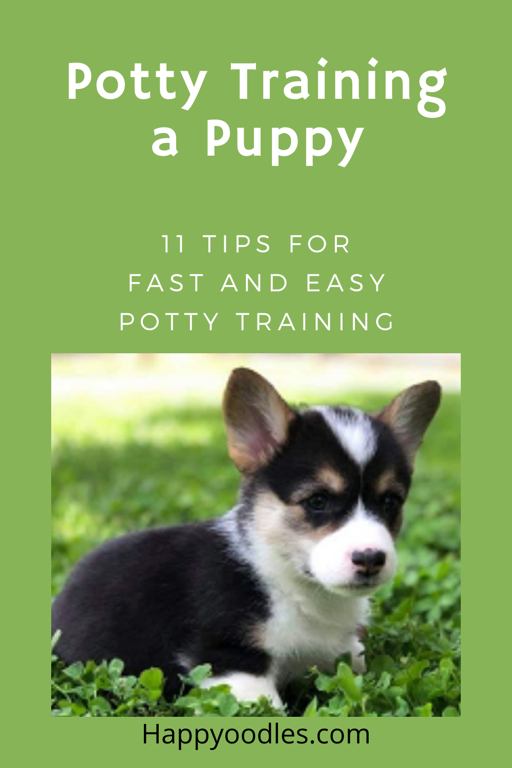 Pin on Pet Bloggers Group Board