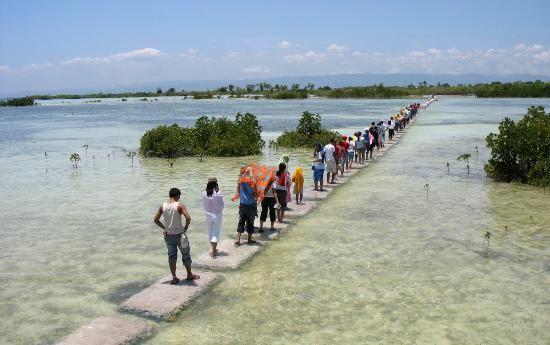 olango island cebu