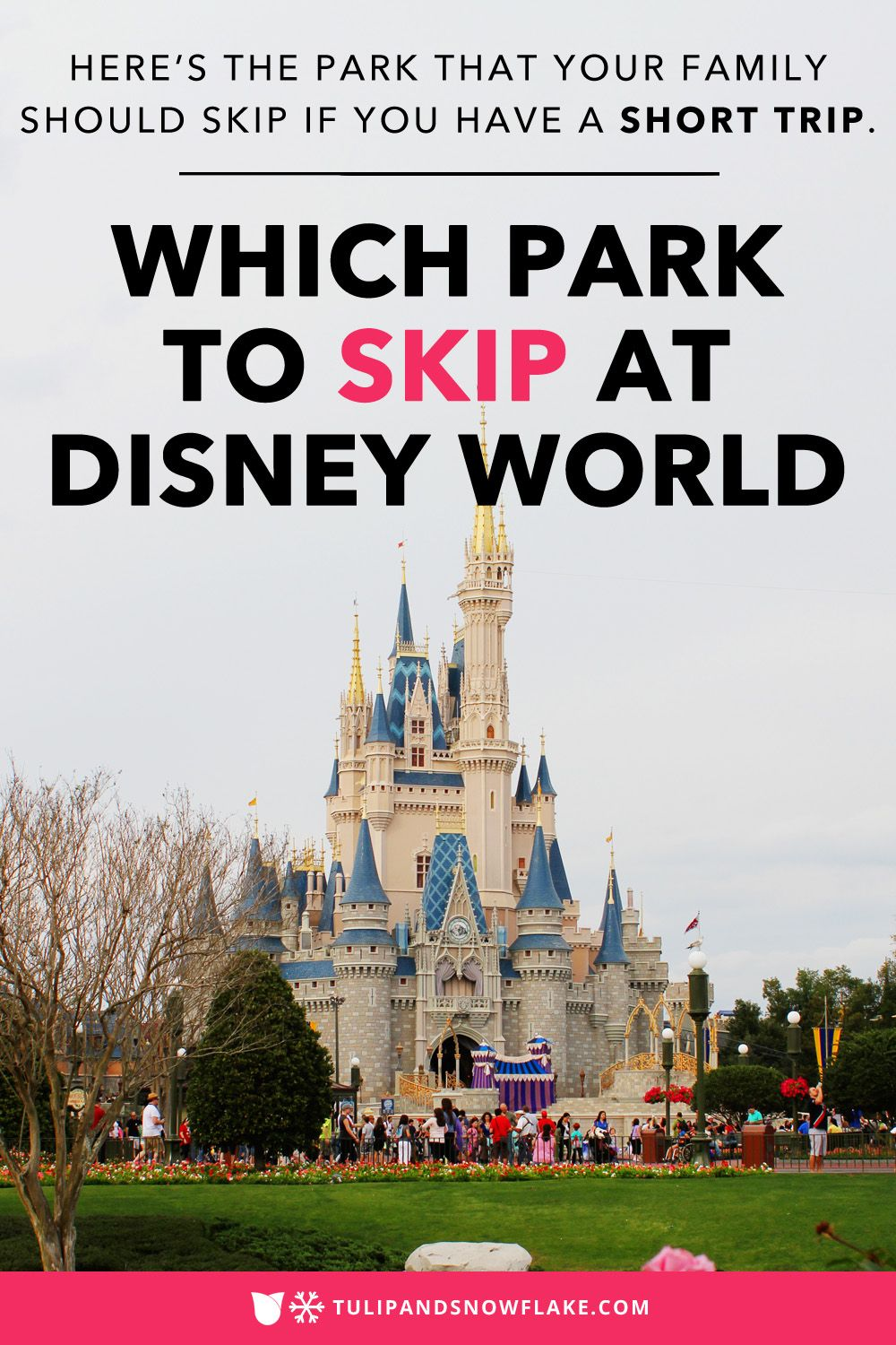Which Disney Park To Skip If You Only Have 2 Or 3 Days Disney World Vacation Planning Walt Disney World Vacations Family Disney Trip