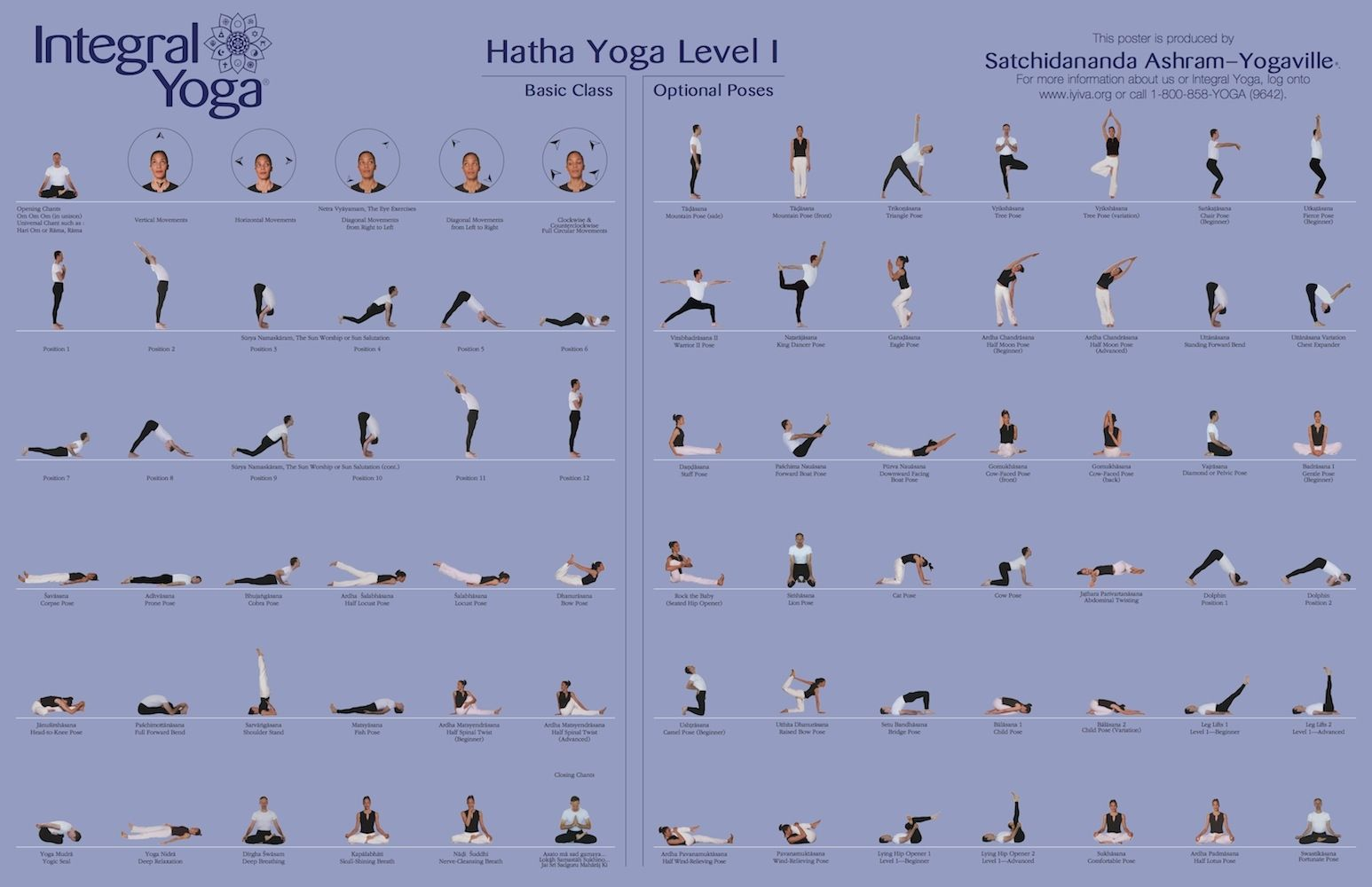 Yoga Asanas Level 1