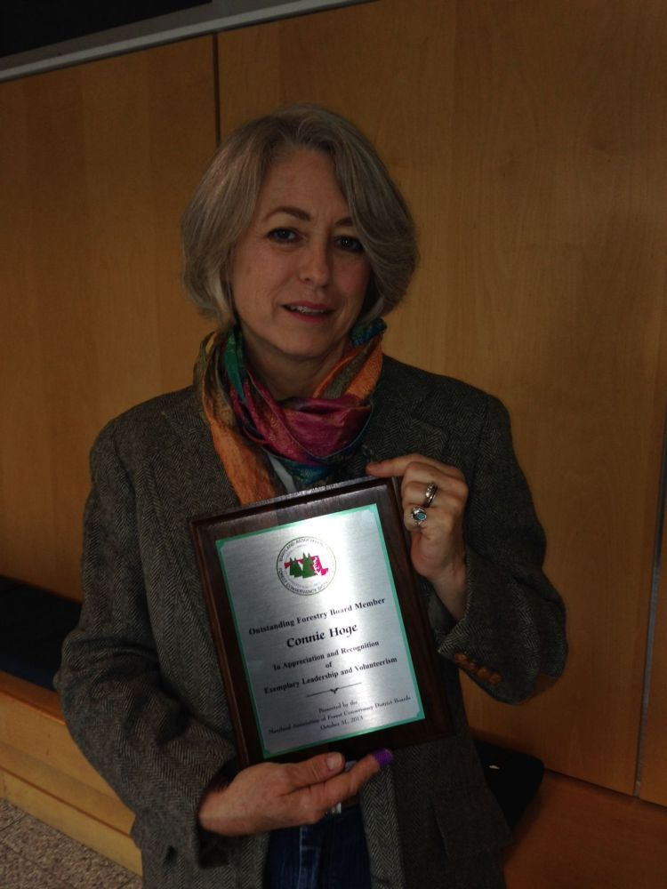 Carroll county forestry board chair receives award http