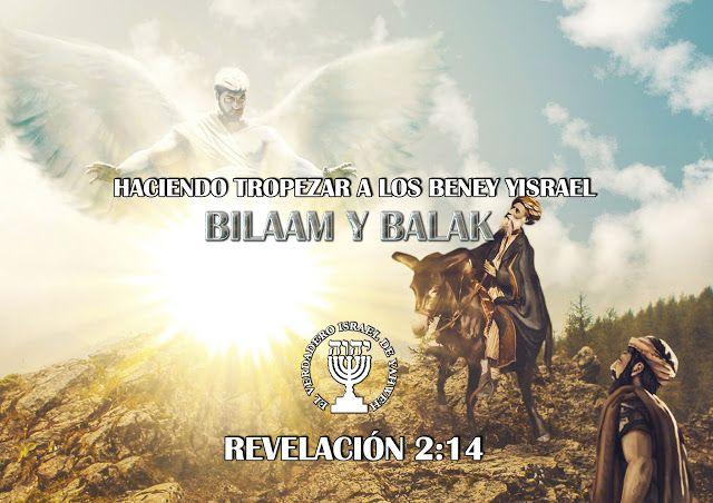 DICCIONARIO BIBLICO HEBREO, ARAMEO, ESPAÑOL MOISES CHAVEZ ...