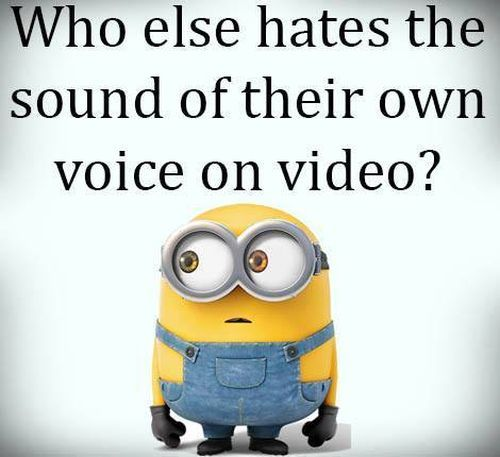 Funny Minions Pictures For The Week