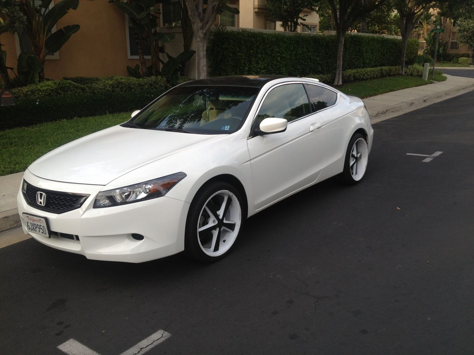 Honda accord coupe white