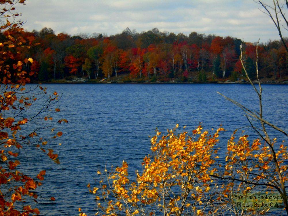 Autumn Colours on Duck lake Orrville Ontario