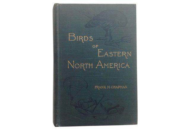 Birds of Eastern North America, 1909