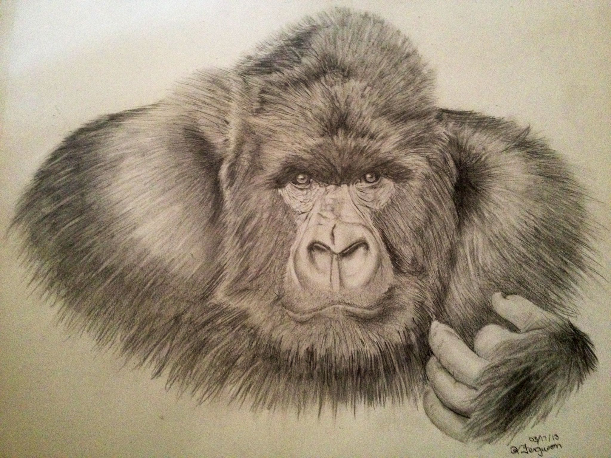 This is a photo of Eloquent Picture Of Gorilla Drawing A Picture