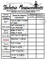 Skeleton Measurements - An activity that invites students ...