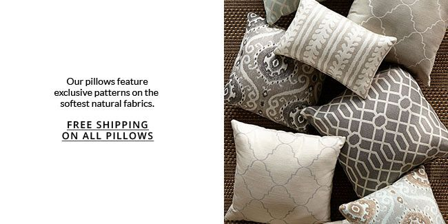 Pillows At Pottery Barn Eastwood Towne Center Lansing