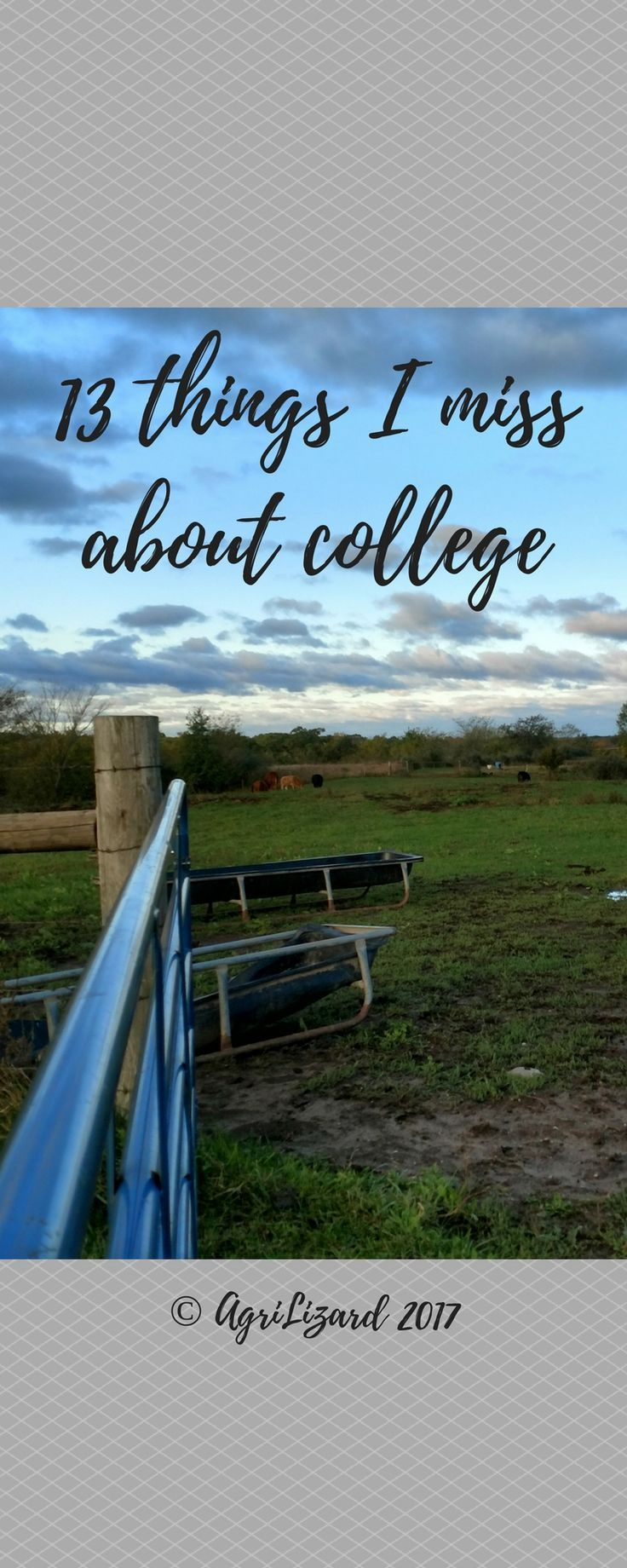 13 Things I Miss About College AgriLizard Student