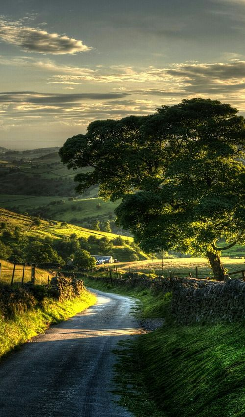 Country Road Scenery Landscape Nature Photography