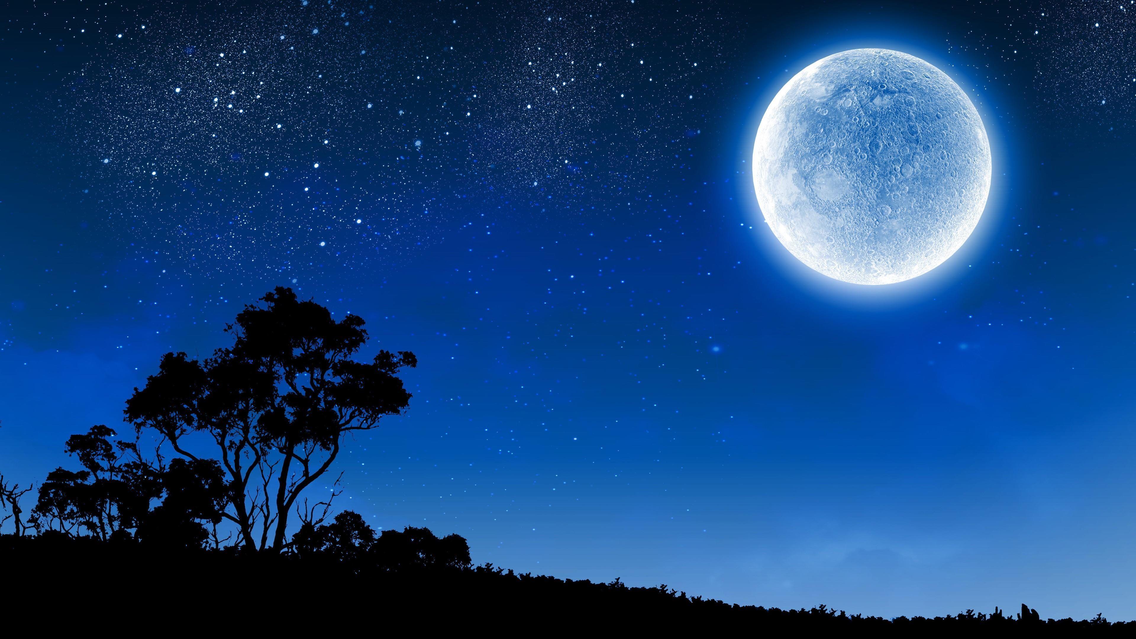Moon Full Moon Night Night Sky Starry Silhouette Starry Night 4k Wallpaper Hdwallpaper Desktop Starry Night Wallpaper Full Moon Night Skies Best of full moon night hd wallpaper