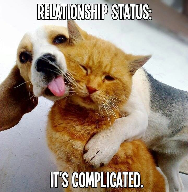 Relationship status: it's complicated.
