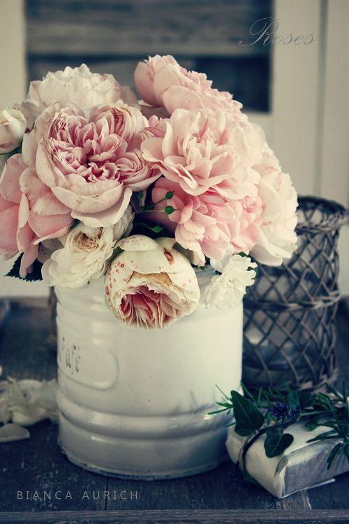 vintage pinks