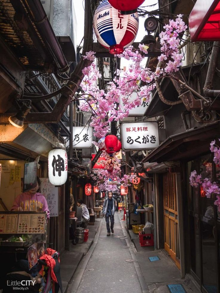 Tokio Reisetipps: 16 TOP Sehenswürdigkeiten & was man ...