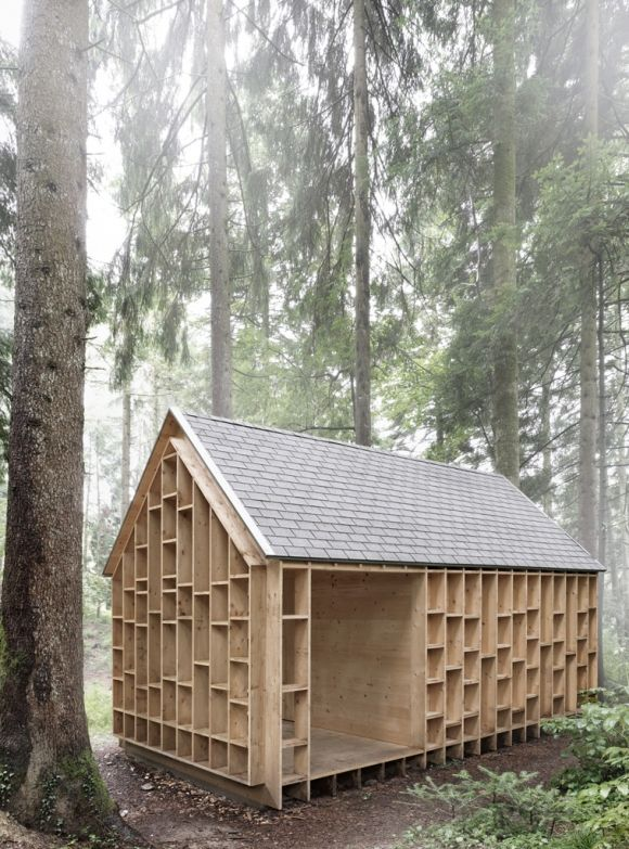 House of The Forest Owls by Bernd Riegger Owl, Cabin and House