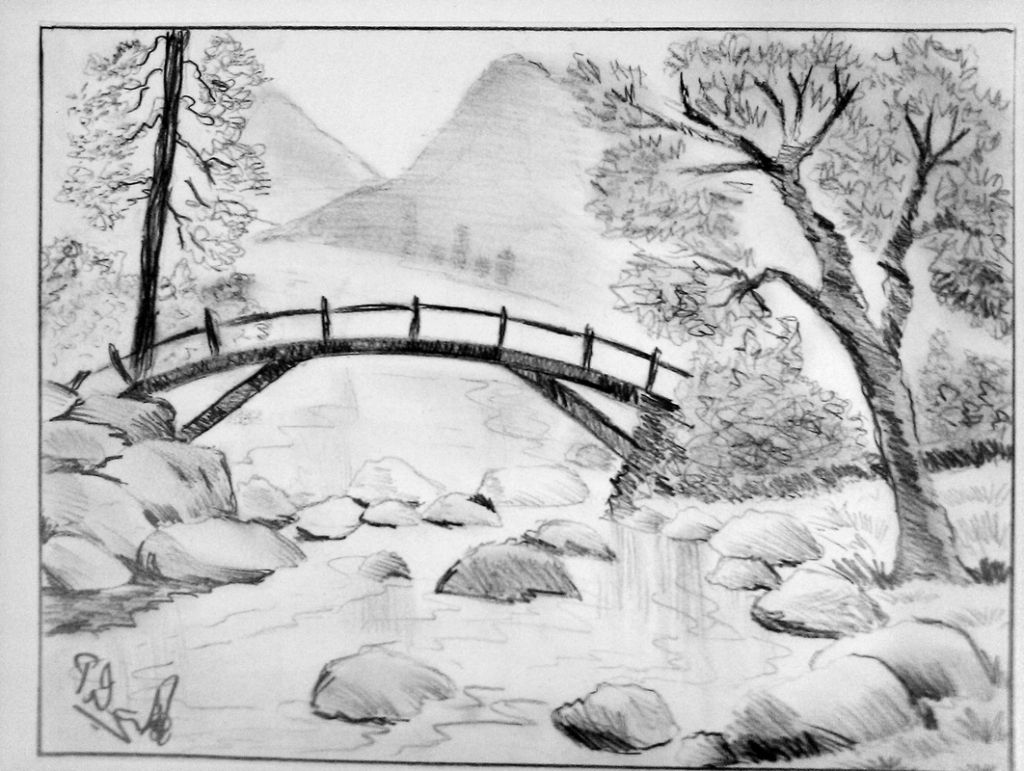 Charcoal Nature Drawings D Easy Drawing Pictures Of Nature