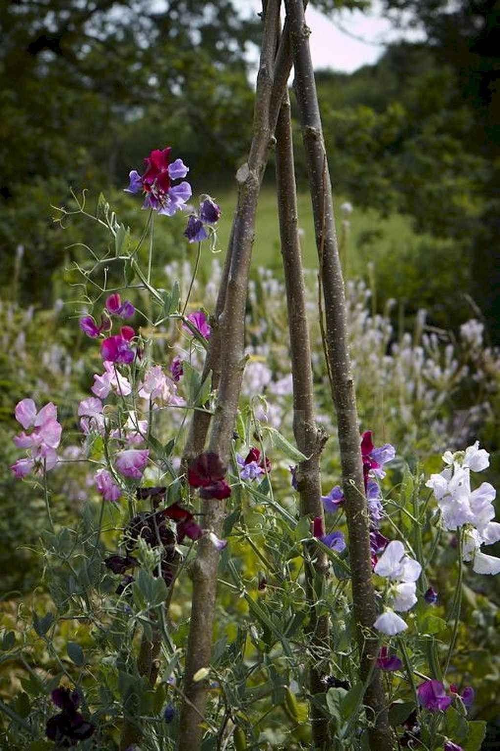 Photo of 57 Schöner kleiner Häuschenblumengarten für Hinterhofideen – Decoradeas –  57…
