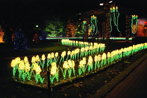 oglebay parks festival of lights in wheeling - Oglebay Park Christmas Lights