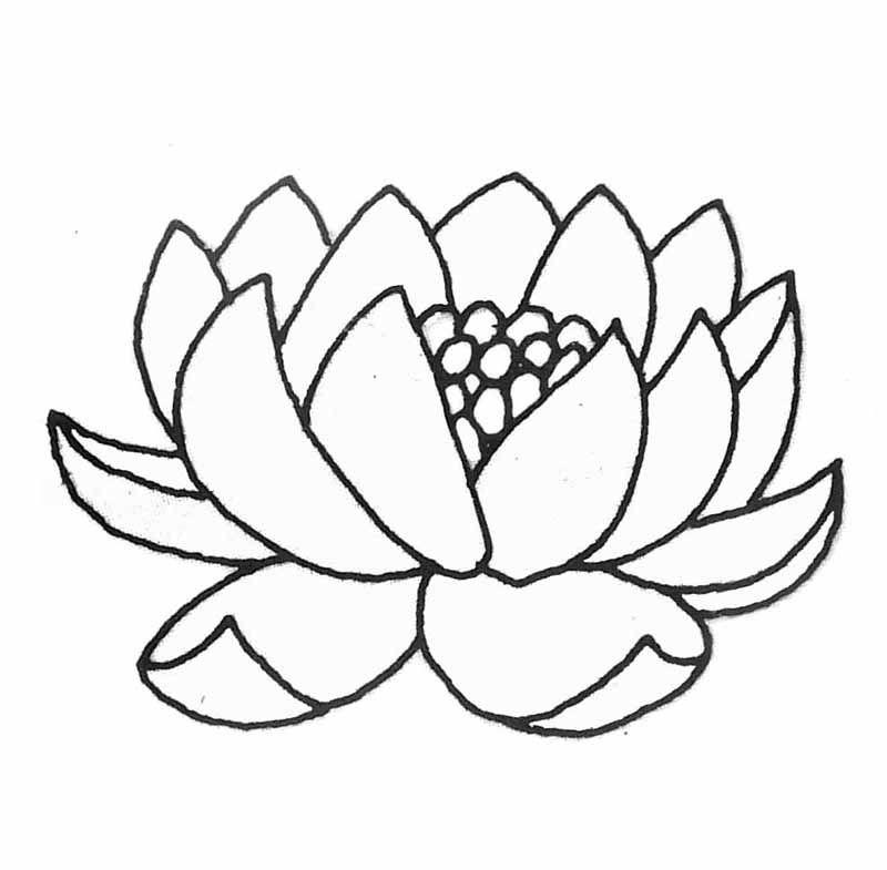 Fleur De Lotus Dessin Recherche Google Tiny Tattoo Stained