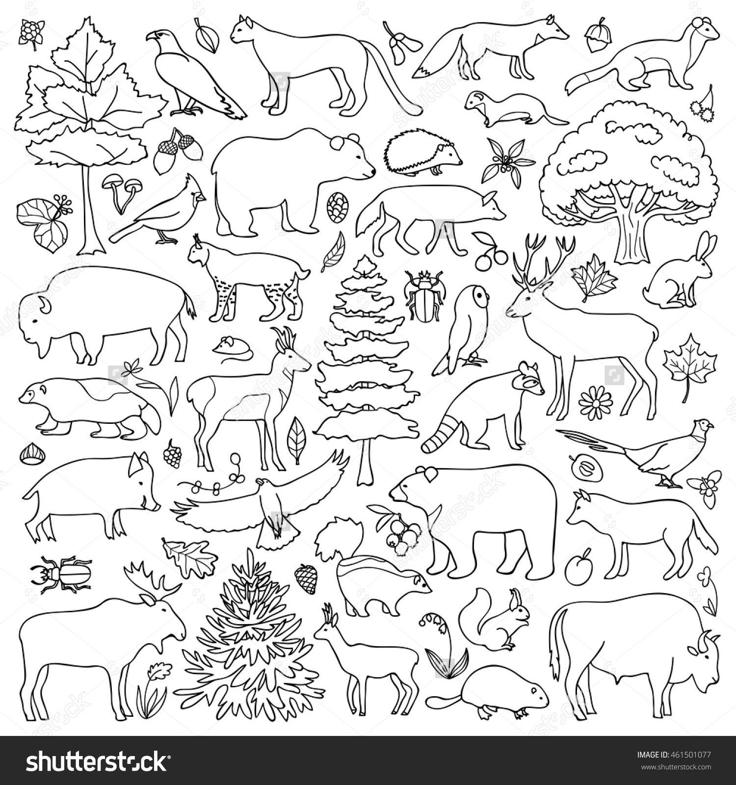 7 Forest Animals Preschool Worksheets F0cbe