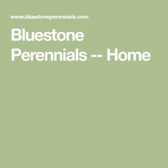 Bluestone Perennials -- Home