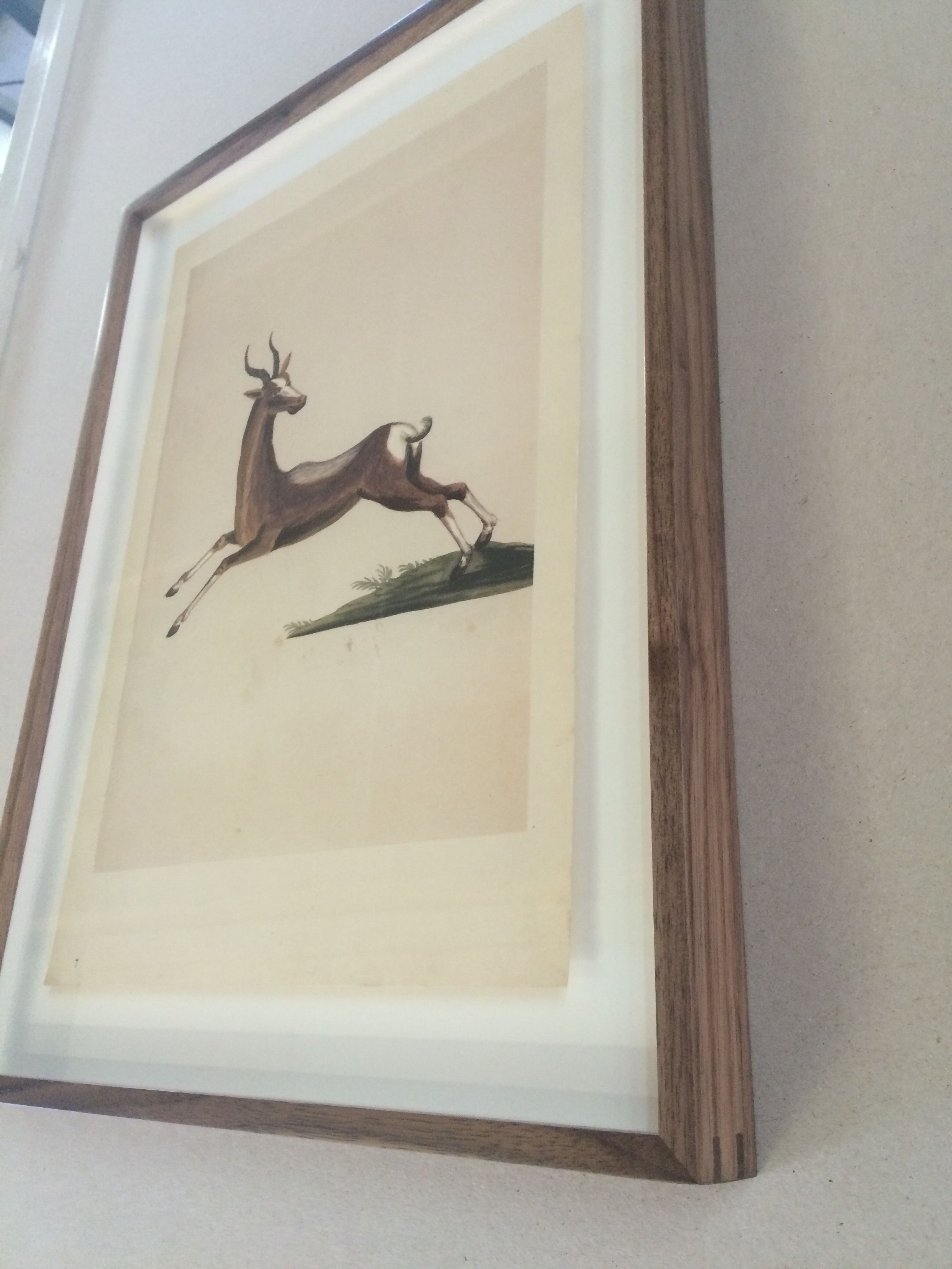 Lithograph Framing by NB Art and Framing, American Walnut, Black ...