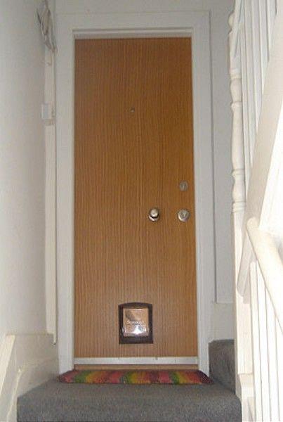 Titan steel door with wooden fascia - P1AK, £2250 | Security