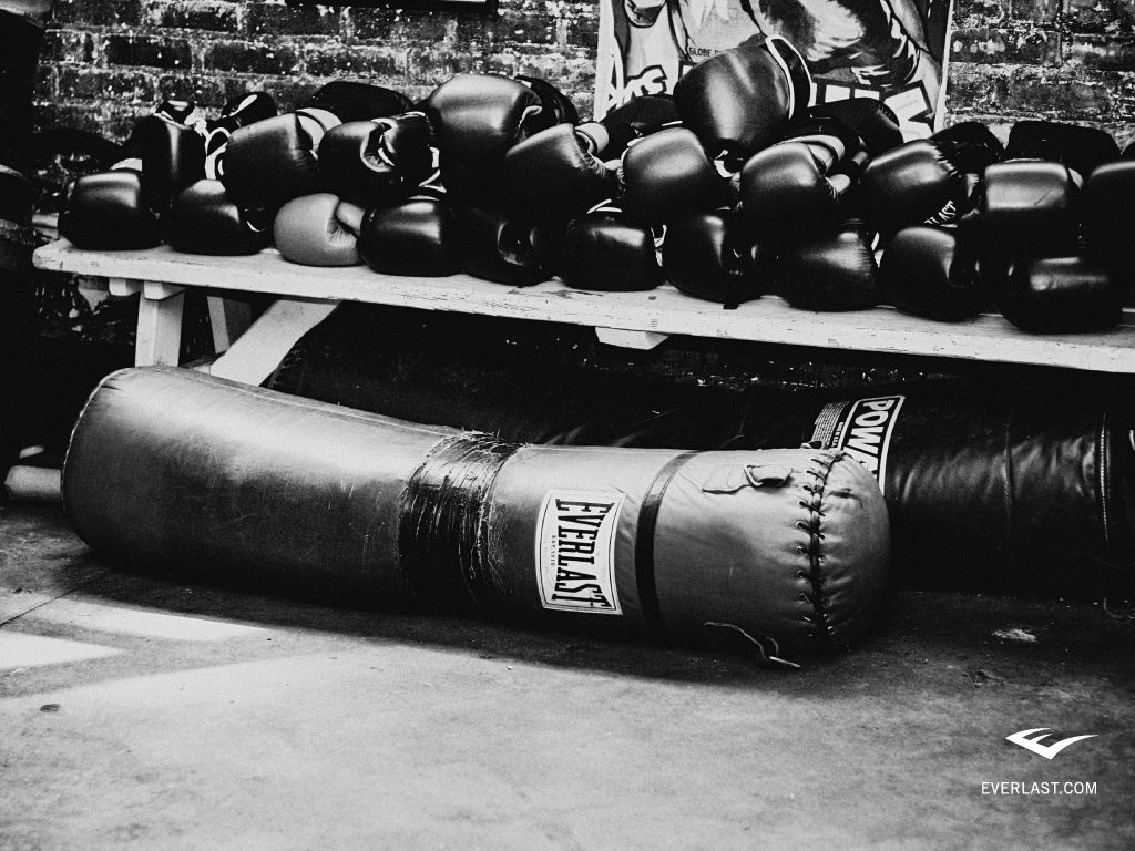 9d76857d36 Everlast Boxing Media | kickboxing and fight tips | Boxing gloves ...