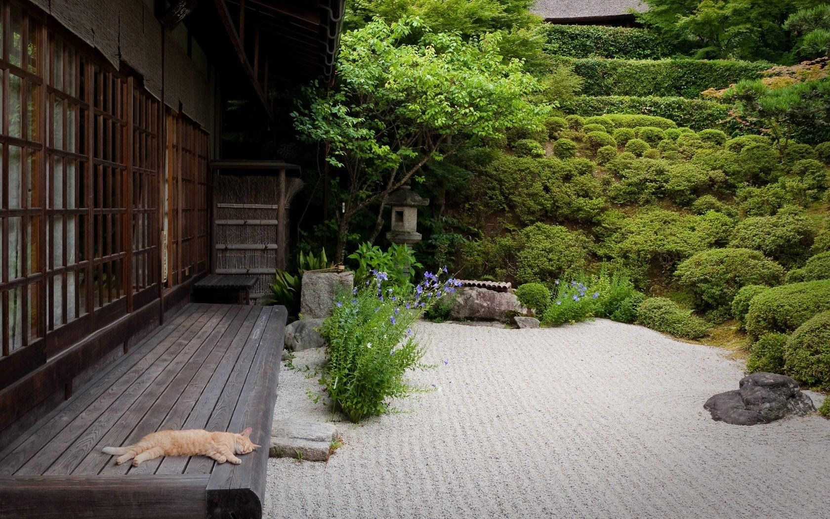 Japanese Garden Landscaping Design Ideas And Photos. Japanese Gardens  Combine The Basic Elements Of Plants, Water, And Rocks With Simple, Clean  Lines To ... Part 60