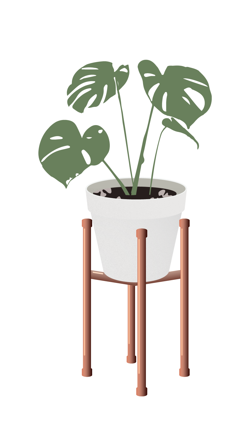Vector Indoor Plants For More Https Www Toffu Co Download Link Https Www Toffu Co Downloads Plant Art Plant Drawing Architecture Drawing