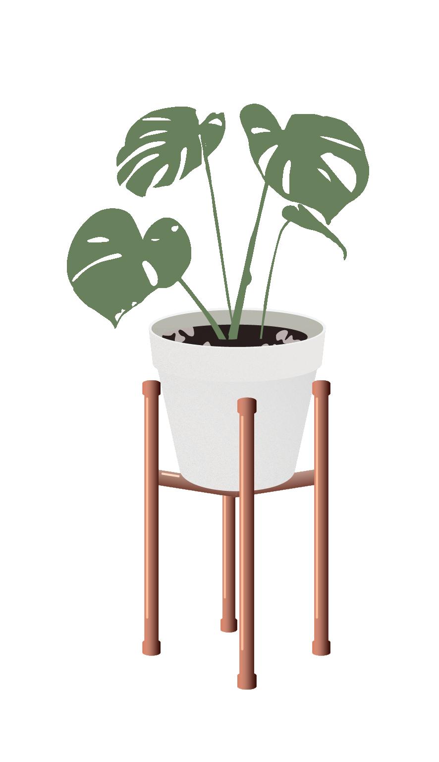 Pin De Novita Setyawati Em Hiasan Ilustracao De Plantas Desenhos De Flores Colagem