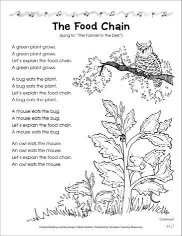 The Food Chain: Content-Building Learning Song