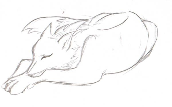 How to draw wolf ears - photo#16