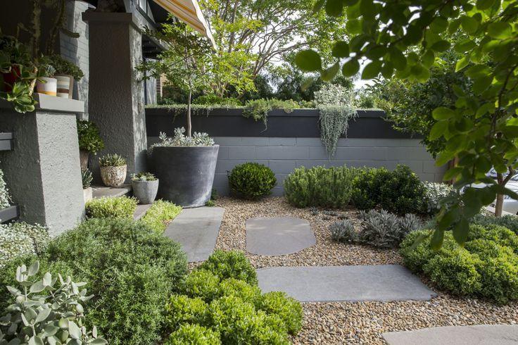 carex garden design by carolyn mullet