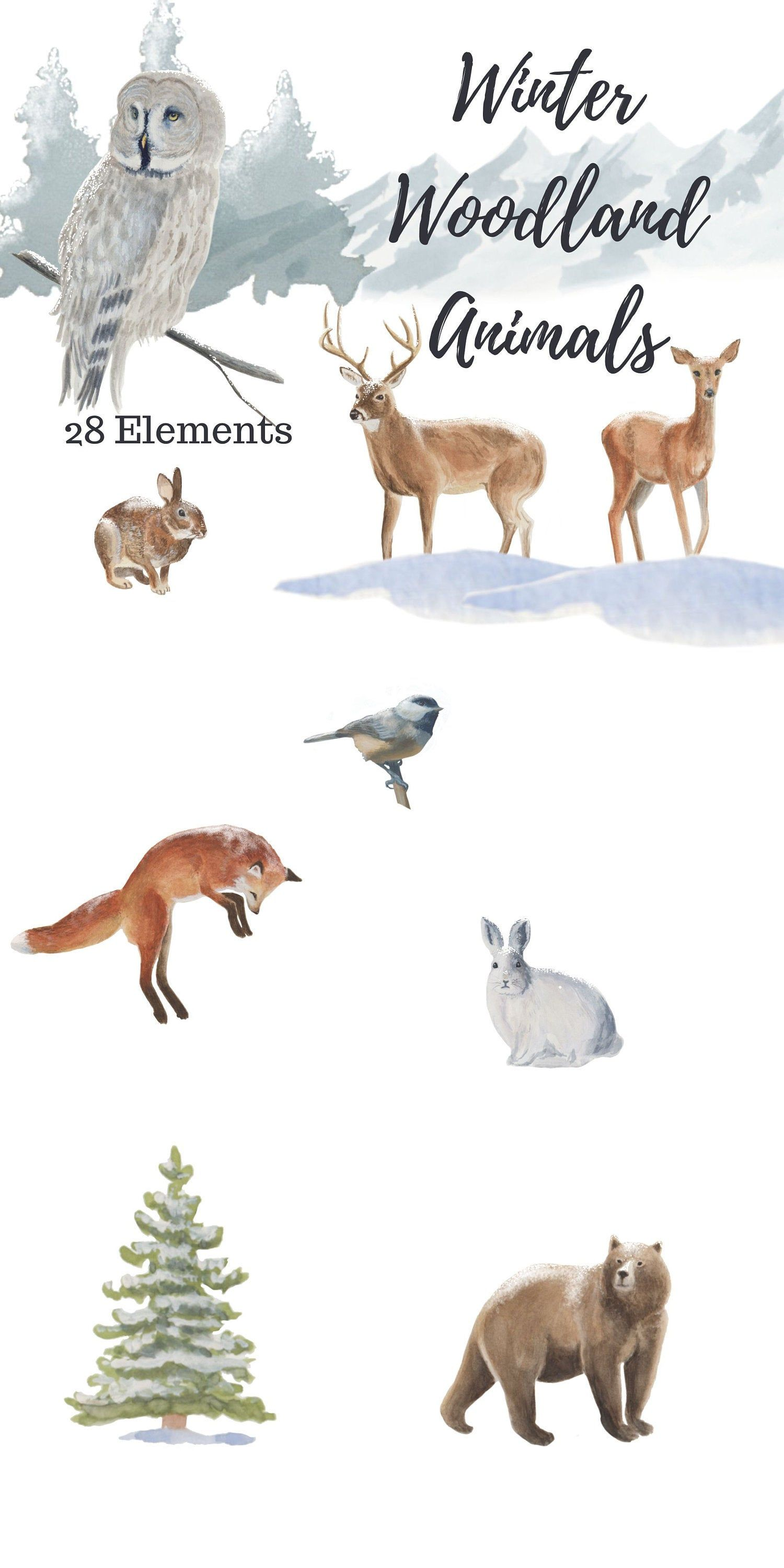 Winter Clipart, Woodland animals wildlife clipart features
