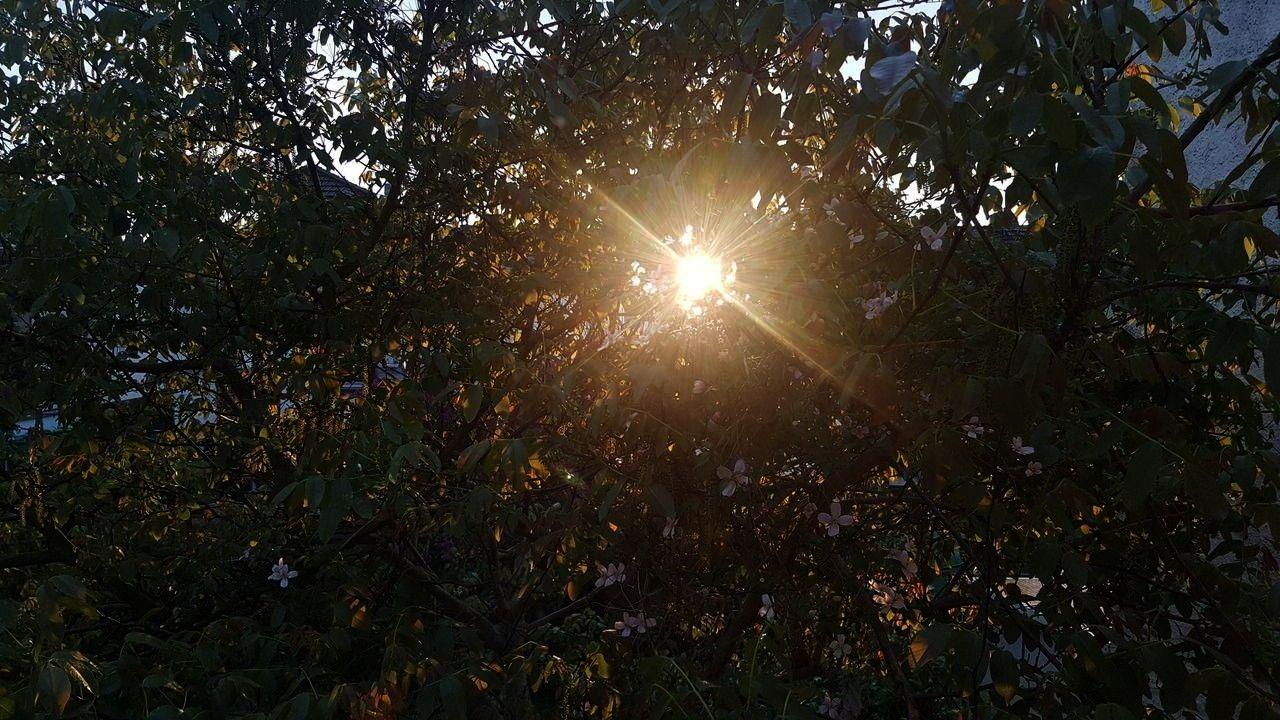 sunsets -Love those sunsets -those sunsets -Love those sunsets -  Love those sunsets -  This would