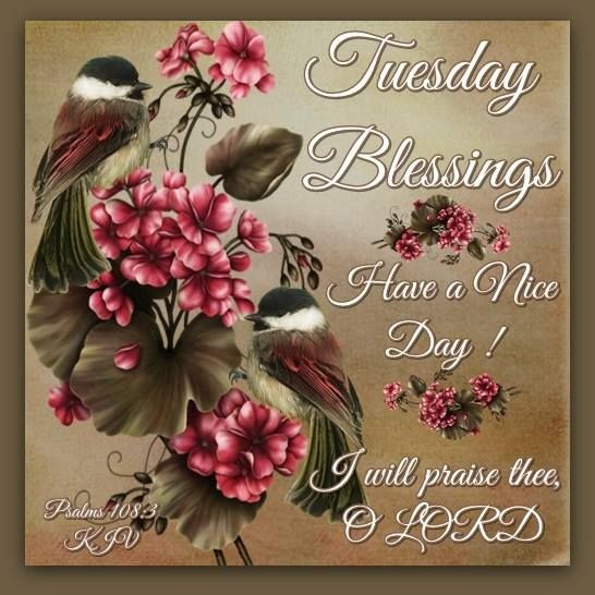Good Morning!!! Have A Blessed And Prosperous Day!!! | Devotionals