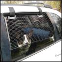 BreezeGuard Car Window Screens