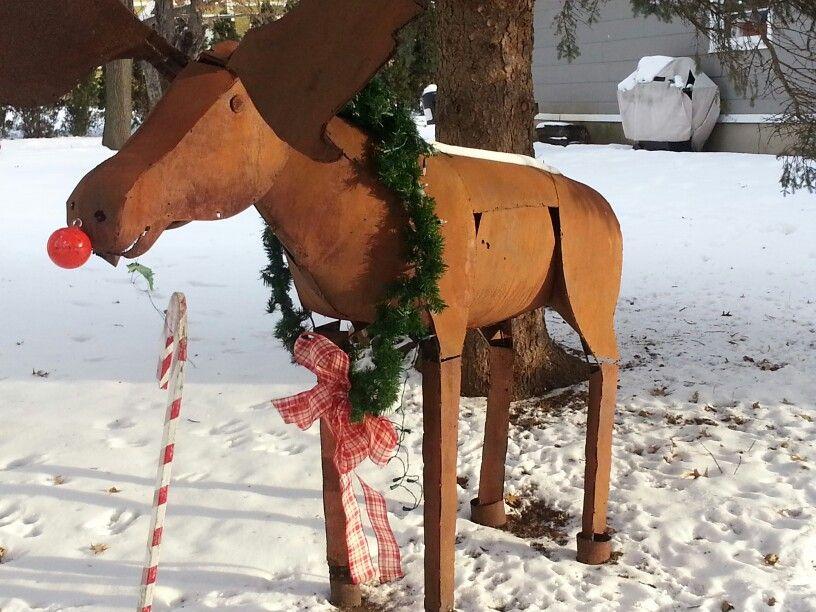 Maynard is ready for Christmas!
