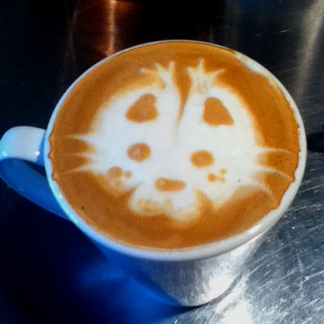 Kitty latte art :) (one of the girls at work made it)