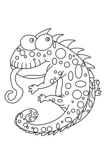 chameleon coloring pages free printables - Chameleon Coloring Pages Printable