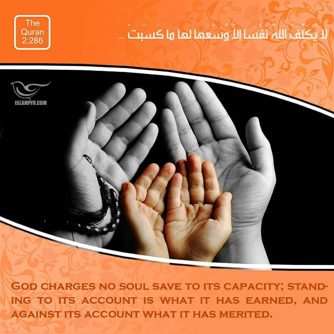 Shia Shiamuslim Shia Muslim Shia Muslim Shia Shiamuslim